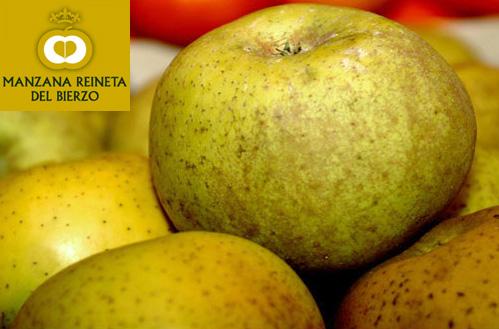 manzana reineta2