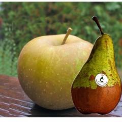 Caja combinada de pera y manzana. 4Kg aprox.AGOTADA